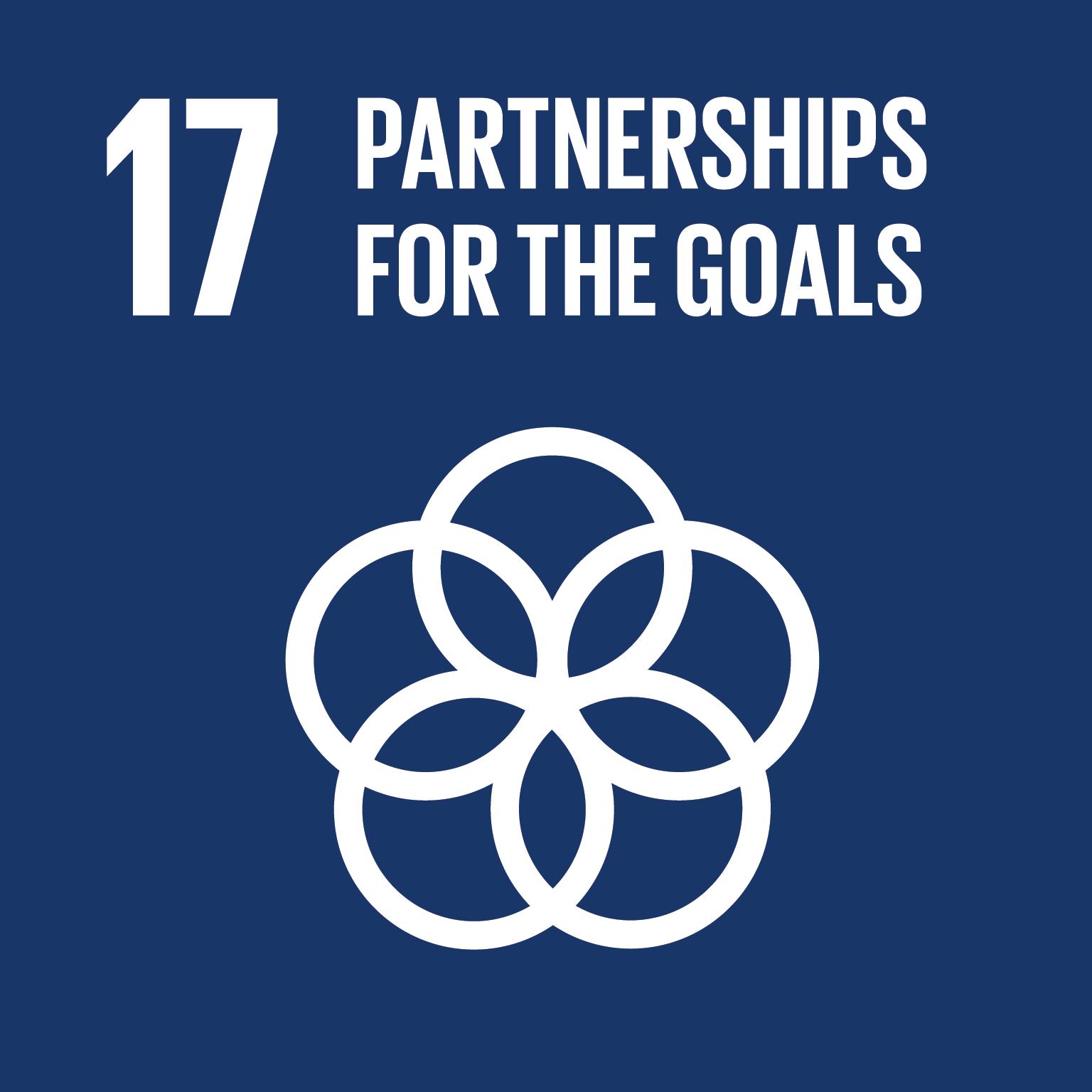 Logo: 17 Partnerships for the goals